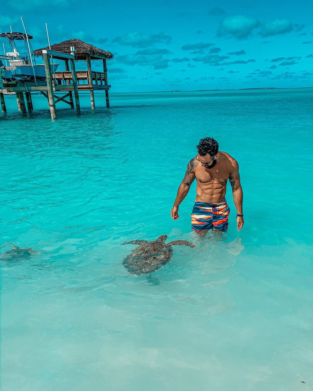 One Week Itinerary in the Exumas - Sea Turtles