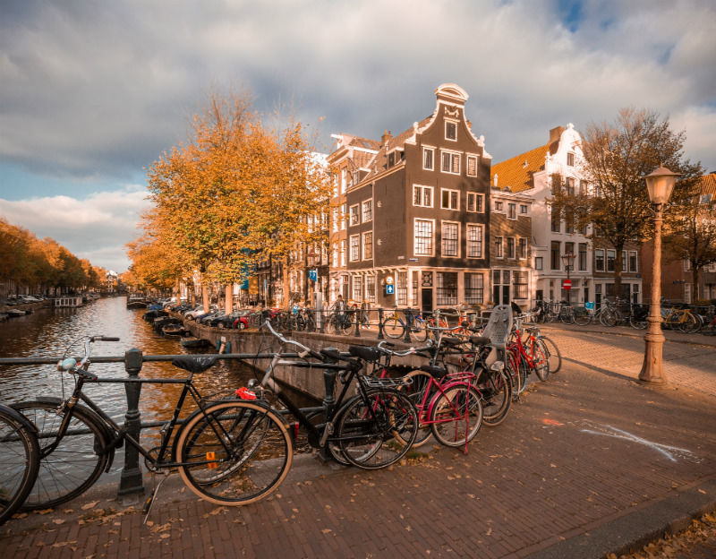 Bicycles of Amsterdam