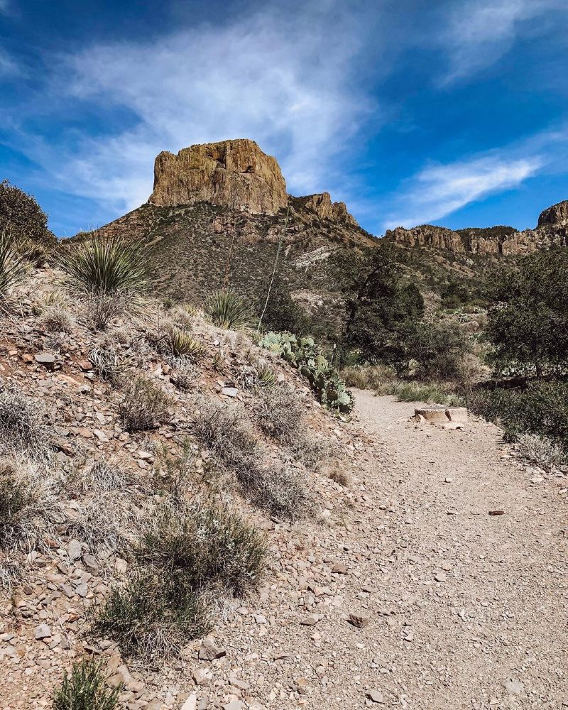 Best Hikes in Big Bend National Park